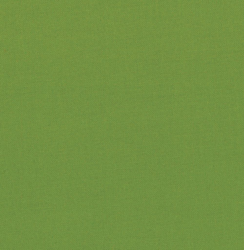 Bella Solids - Leaf 9900 192